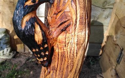 For Sale – Woodpecker against the trunk of a tree made from cedar – £220