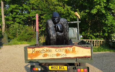 SOLD – Life-size carving of a Silver-Back Gorilla made from Cedarwood