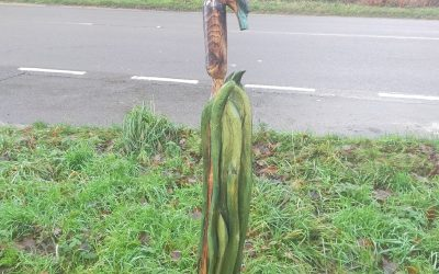 For Sale – Two King Fishers Hunting – £600